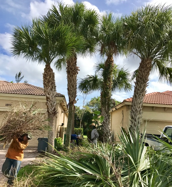 Palisades Community Of West Palm Beach Building Our